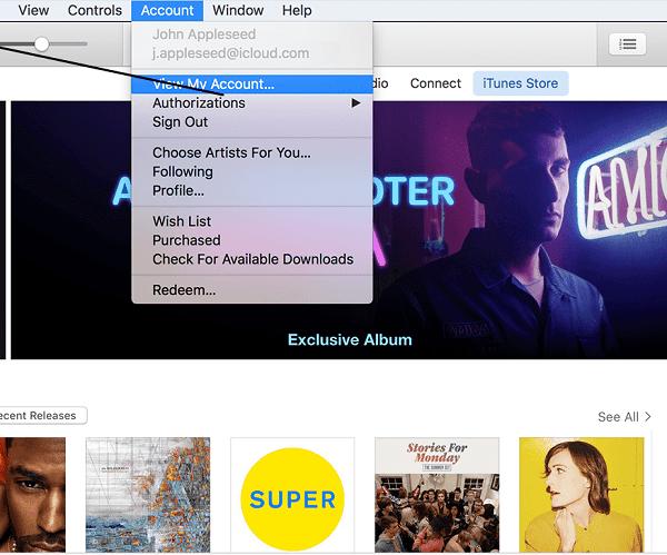 iTunes account window
