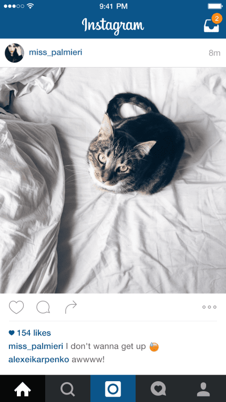 instagram photo with a cat on the bed
